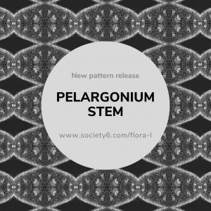 Picture of a monochromatic plant microscopy pattern of pelargonium stems