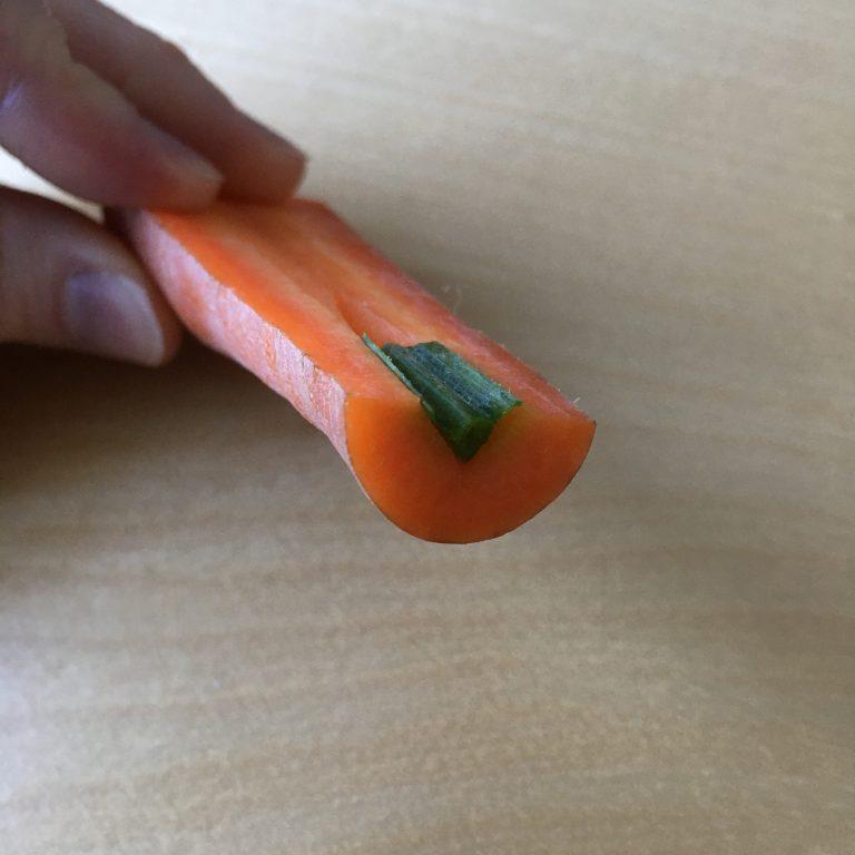 Carrot as sample holder