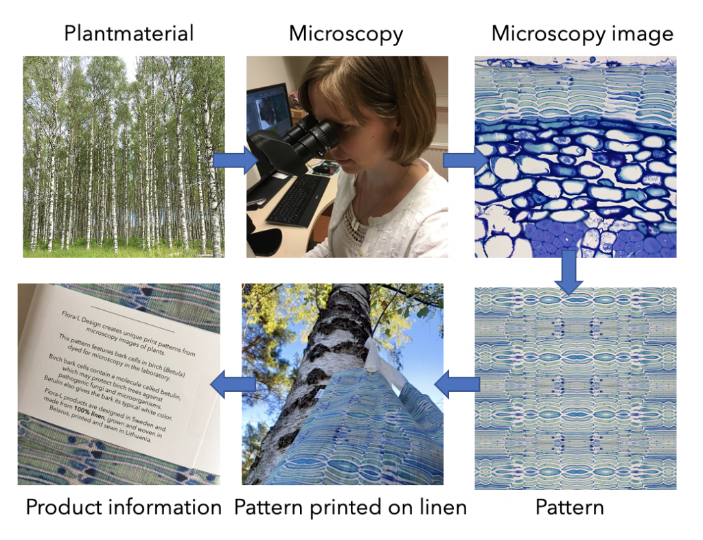 Design process from plant to pattern